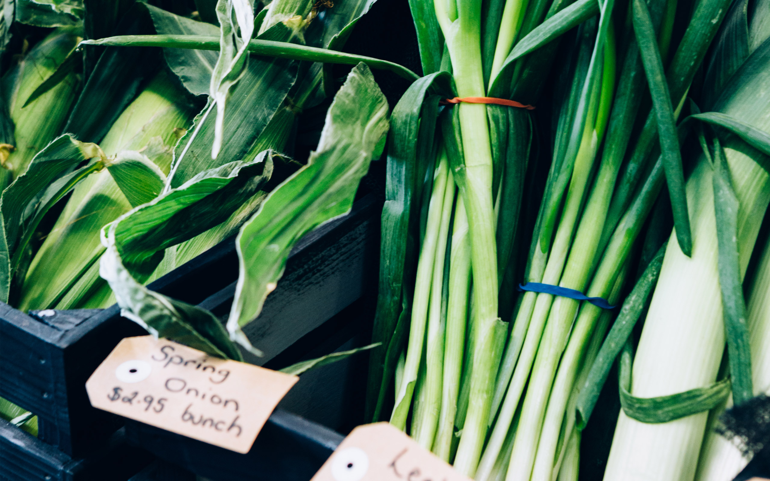 Geelong local green grocer